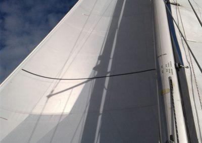 Triradiale cruising CDX new gray contender
